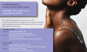 Lupus Workshop Series