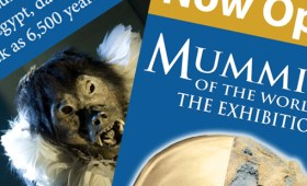 Discovery Place/ Mummies of the World