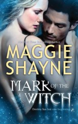 Mark of the Witch (The Portal, #1)