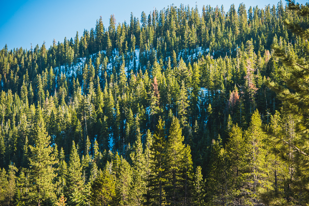 Lake_Tahoe_0013_160318