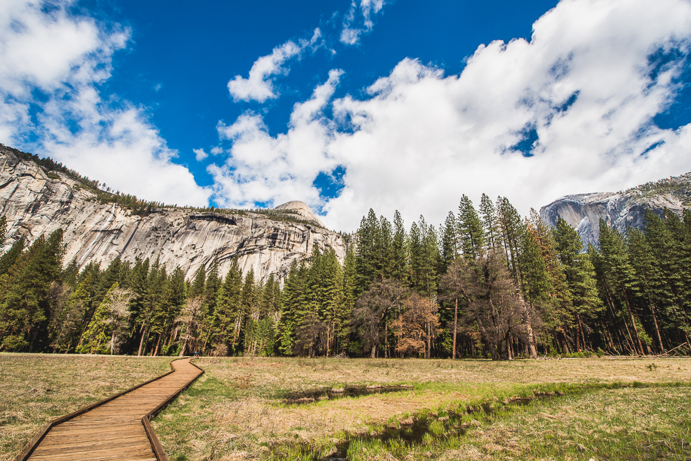 Yosemite_Day_2_0031_160322