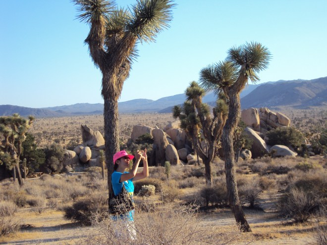 Here I am taking photos at Joshua Tree National Park.