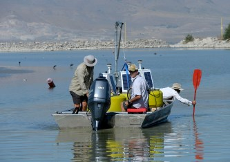 Al Hartmann | The Salt Lake Tribune Environmental scientists with Utah Division of Water Quality leave the Utah Lake Marina boat harbor with three solar buoys housing probes called sondes that should be able to give them a warning when nutrients are building up to the point that they'll have another massive algal bloom like the one in July. They check the water depth with paddles. It's only about one foot in this part of the harbor with the lake level at only about 37 percent at the end of August 2016.