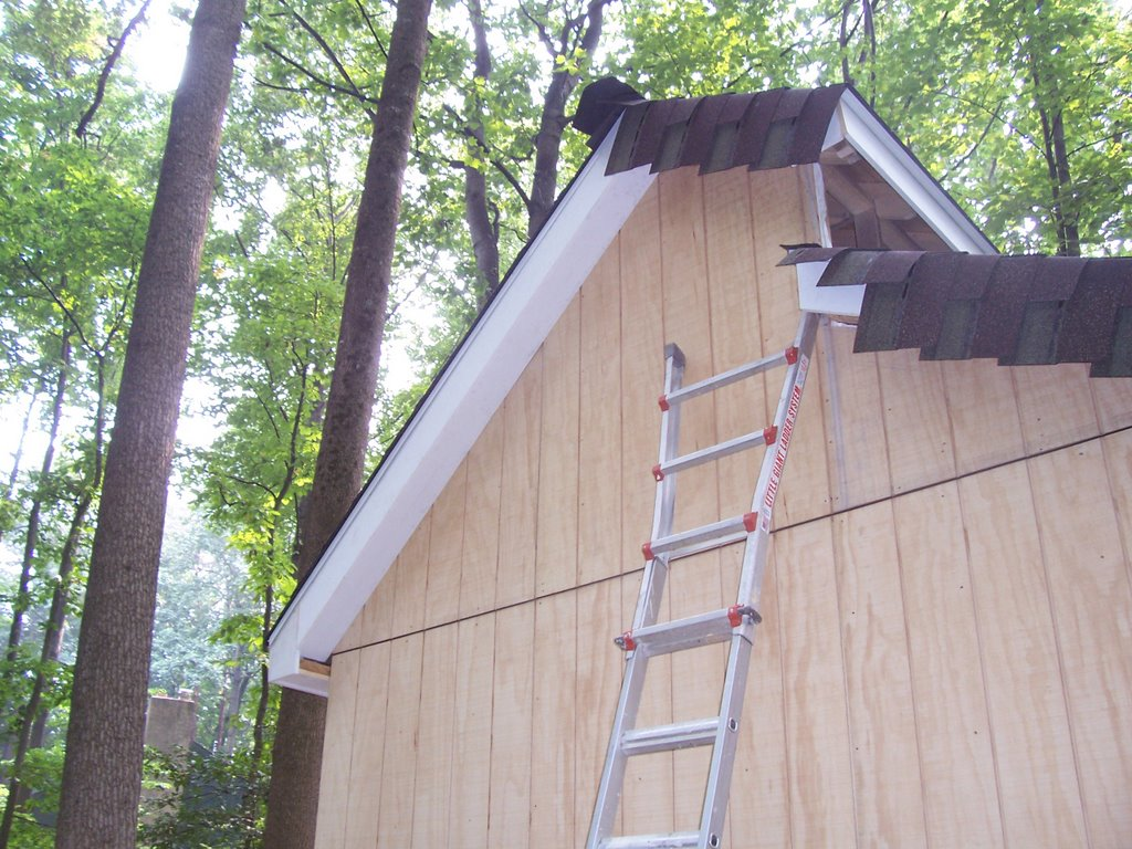 Attractive How To Build A Shed August 2006 Z Flashing Home Design Ideas T1 11 Siding Nails T1 11 Siding Pros Cons houzz-03 T1 11 Siding