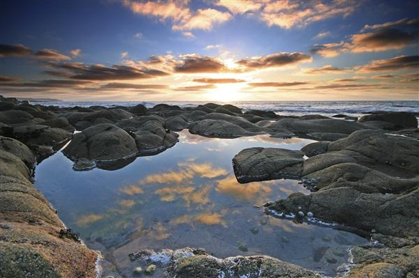Rockpool Reflection