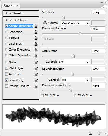 Brush options - Shape Dynamics