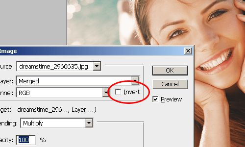 The invert option in the Apply Image tool