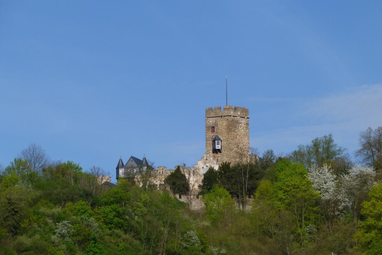 Burg.Lahneck.Face.2015-photosvonlahnstein.de-p1010236