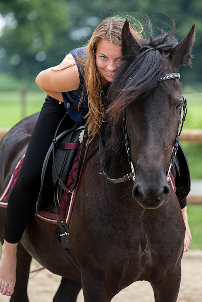 Pferde14
