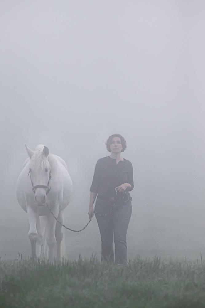Pferde26