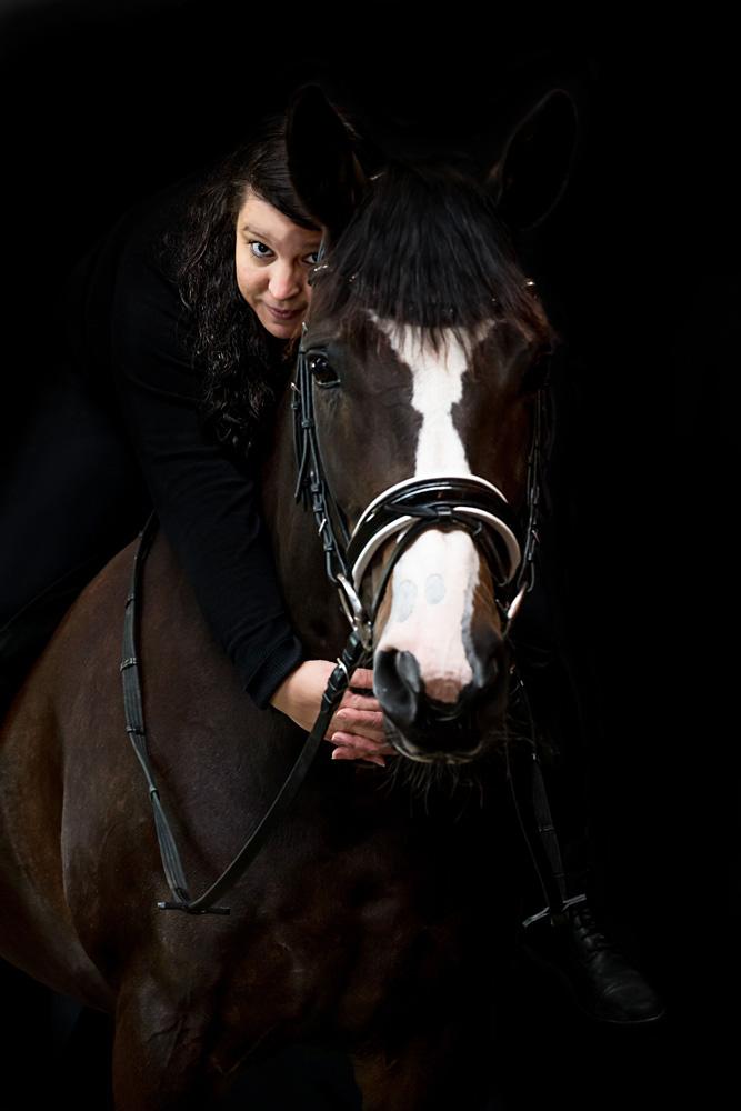 Pferde42