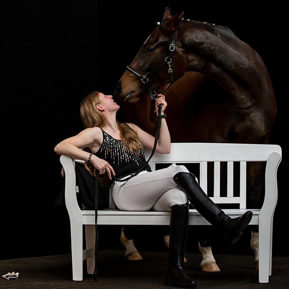Pferde49