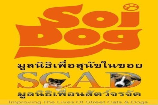 Bangkok's Soi Cats and Dogs [SCAD] Foundation To Be Integrated into SDF.
