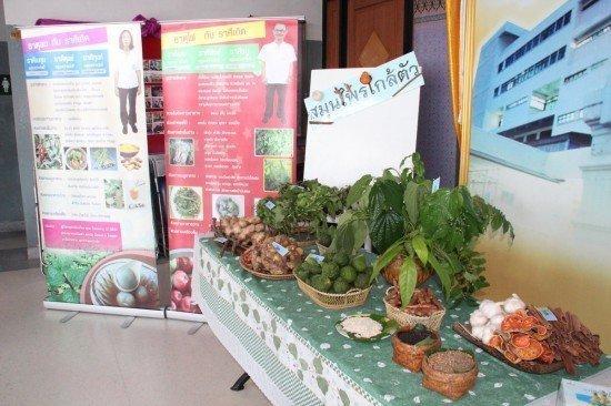 Phuket holds seminar on herbal medicines