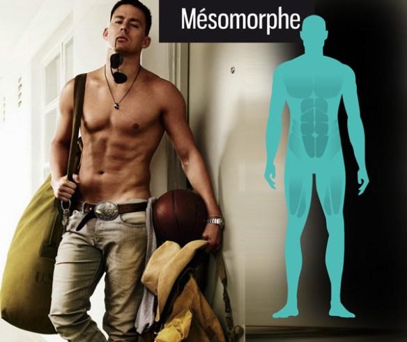 morphotype-mesomorphe-channing-tatum