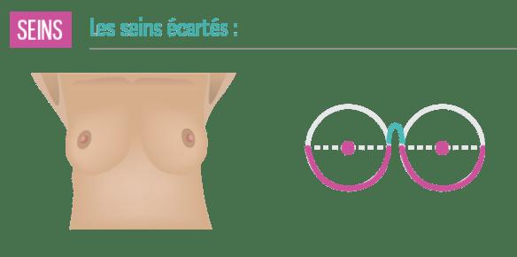 seins-ecarte-poitrine-sexy
