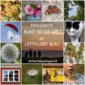 bunt_ist_die_welt_logo_2-2[1]