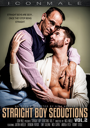 Straight Boy Seductions 2 cover