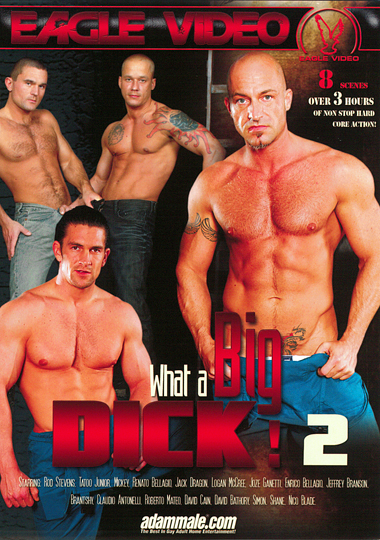 What A Big Dick 2 cover