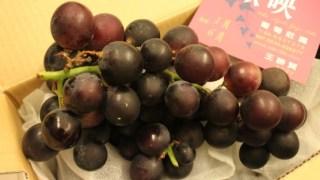 【試吃】歐映巨峰葡萄