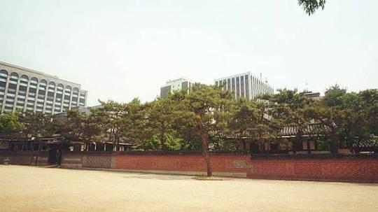 DSC00448_副本