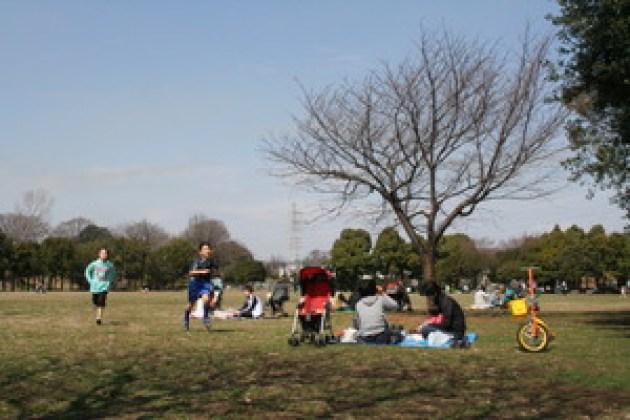 春陽暖烘烘…岸根公園的日光浴