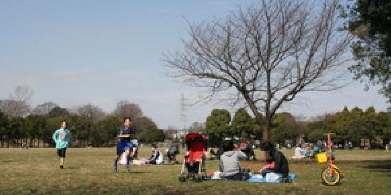 春陽暖烘烘...岸根公園的日光浴