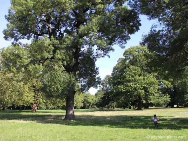 Hyde Park London