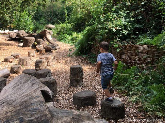 Log Trail, Kew Gardens London