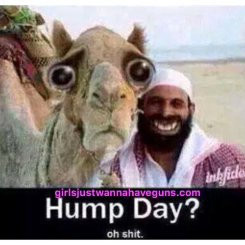 Medium Crop Of Happy Hump Day Meme