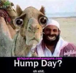 Small Of Happy Hump Day Meme