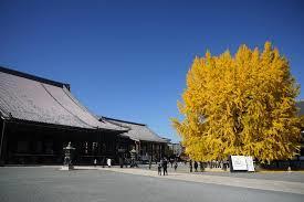 京西本願寺