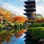 京都東寺の世界遺産は空海が造った!?国宝の見所と紅葉と桜の名所❣