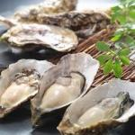 牡蠣の旬の季節がやってきました!!産地と種類で美味しい味覚を探そう❣