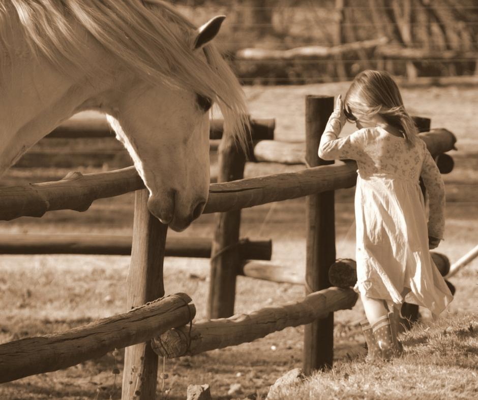 princ na bijelom konju kolumna 19.10.