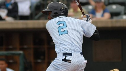 Jorge Mateo at the plate for the Charleston RiverDogs (© Jerry Coli | Dreamstime.com)