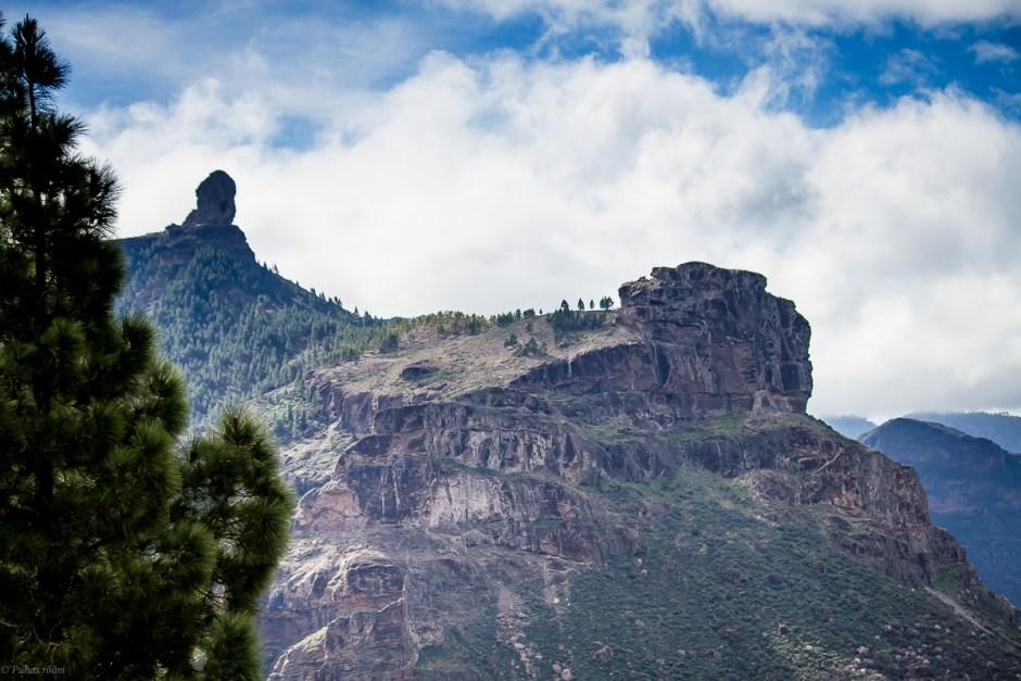 Cran Canaria-47