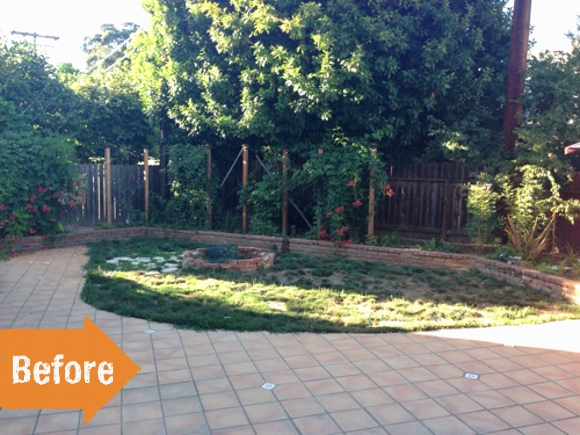 Before & After: A California Yard Becomes Dog-Friendly