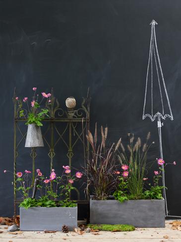 Chalkboard Garden Walls?