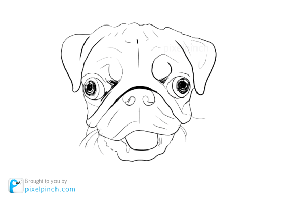 Step 1 Digital Art Dog Pug PixelPinch Digital Coloring Tutorial using Corel Painter & Tablet