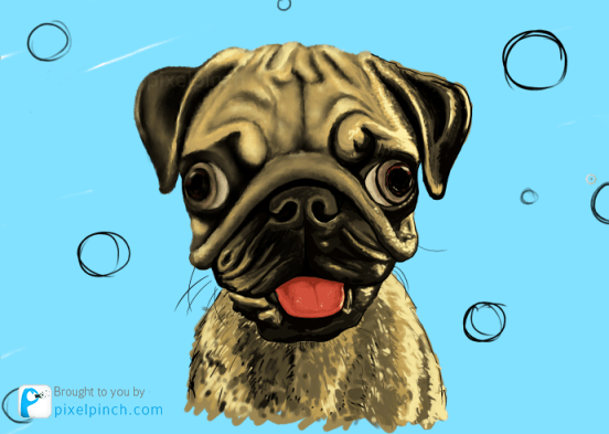 Step 10 Digital Art Dog Pug PixelPinch Digital Coloring Tutorial using Corel Painter & Tablet