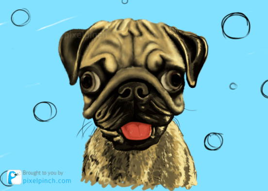 Step 11 Digital Art Dog Pug PixelPinch Digital Coloring Tutorial using Corel Painter & Tablet