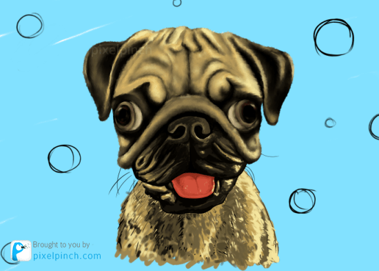 Step 12 Digital Art Dog Pug PixelPinch Digital Coloring Tutorial using Corel Painter & Tablet