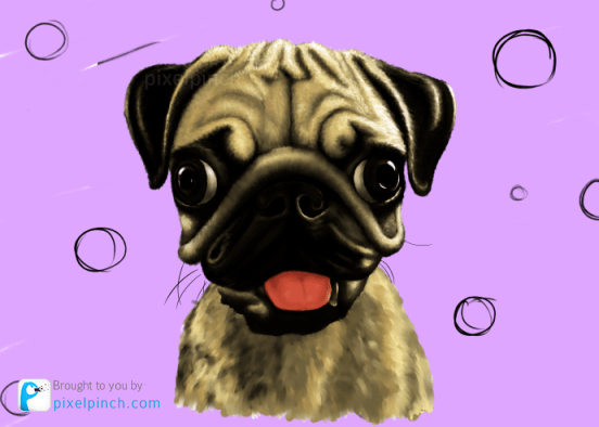 Step 16 Digital Art Dog Pug PixelPinch