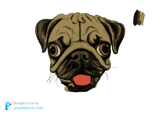 Step 6 Digital Art Dog Pug PixelPinch Digital Coloring Tutorial using Corel Painter & Tablet