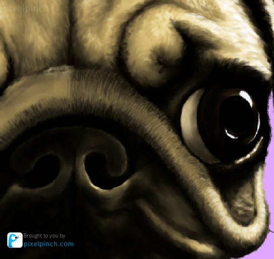 eye 3 Digital Art Dog Pug PixelPinch Digital Coloring Tutorial using Corel Painter & Tablet