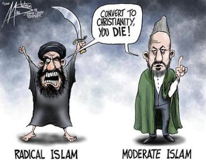 The Mythical Moderate Muslim cartoon