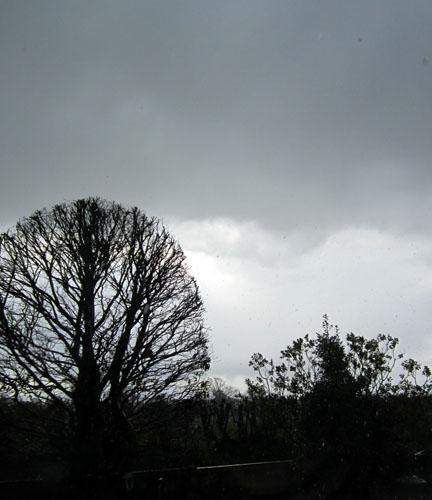 RainySky