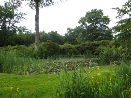 Secret Garden How Hill, Norfolk