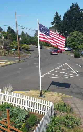 The Flag (2)